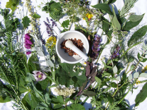 Herbal Substitutes